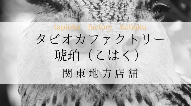 タピオカファクトリー琥珀(こはく)TPIOKAFACTORYKOHAKU関東地方店舗案内