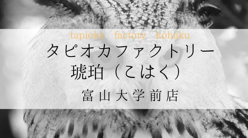 タピオカファクトリー琥珀(こはく)TPIOKAFACTORYKOHAKU富山県富山大学前店