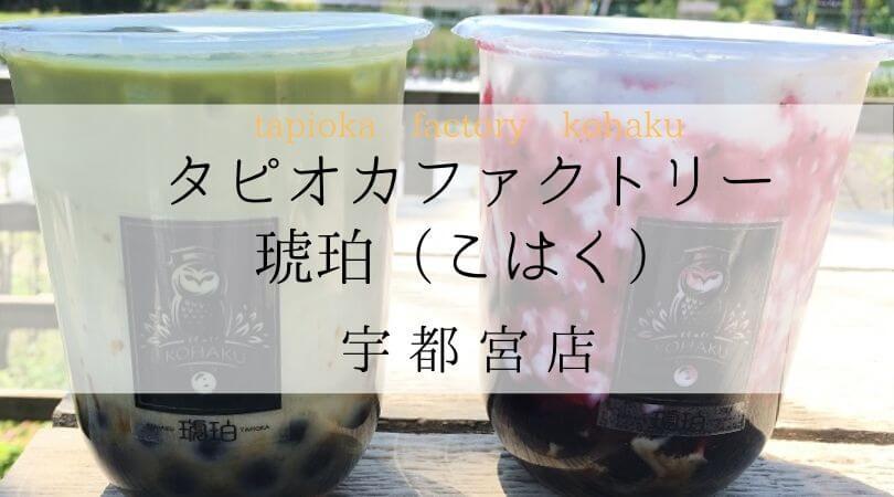 タピオカファクトリー琥珀(こはく)TPIOKAFACTORYKOHAKU栃木県宇都宮店