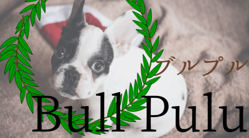 ブルプル(BullPulu)タピオカメニューと店舗一覧
