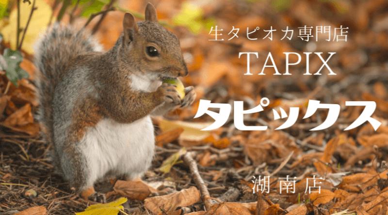タピックスTAPIX生タピオカ専門店滋賀県湖南店