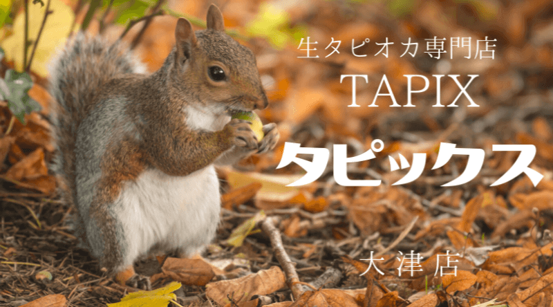 タピックスTAPIX生タピオカ専門店滋賀県大津店