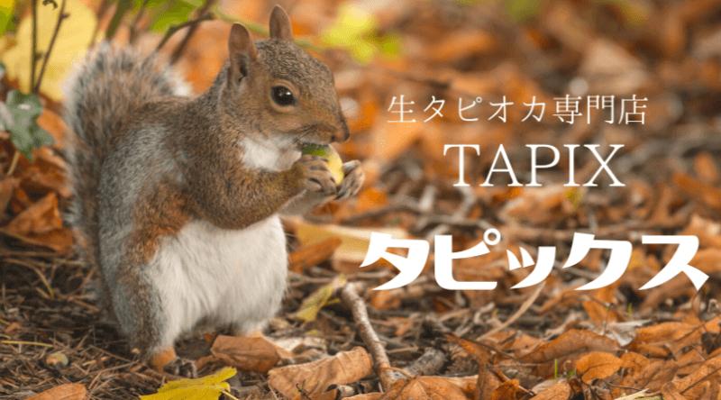 タピックスTAPIX生タピオカ専門店