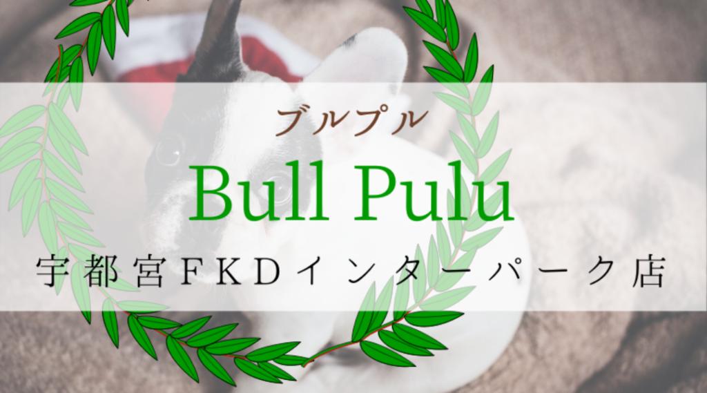 Bullpullブルプル栃木宇都宮FKDインターパーク店