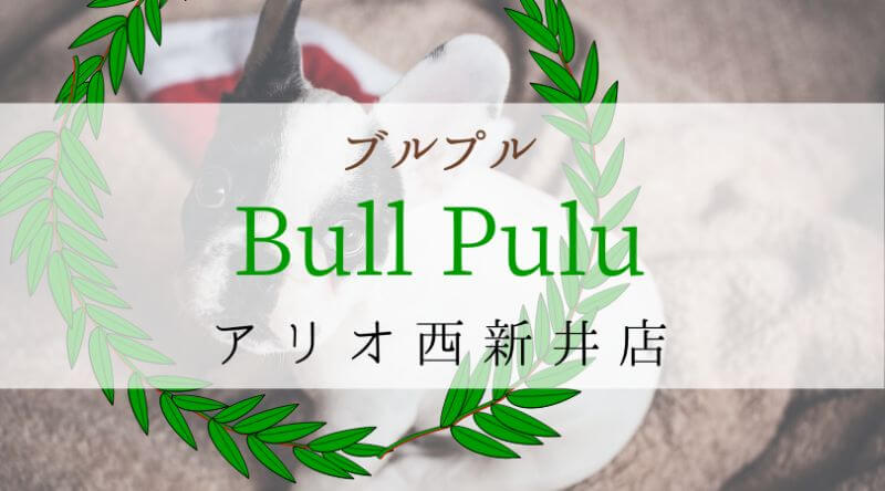 Bullpullブルプル東京足立アリオ西新井店